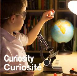 Avancer, construire avec curiosité - Expérience 2019