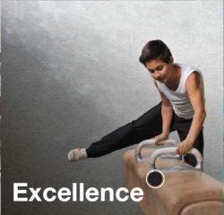 Chercher l'Excellence quelque soit son domaine - Expérience 2019